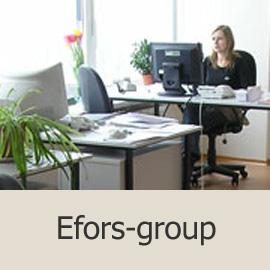 Efors-group